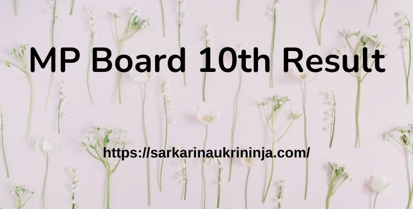 You are currently viewing MP Board 10th Result 2021 Download – Check Here mpresults.nic.in 10th Result Roll No Wise