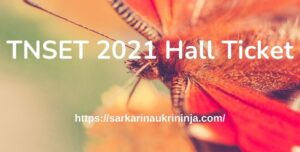 Read more about the article TNSET 2021 Hall Ticket, TN State Eligibility Test Admit Card Download at motherteresawomenuniv.ac.in