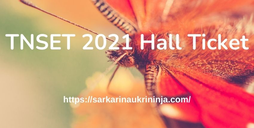 You are currently viewing TNSET 2021 Hall Ticket, TN State Eligibility Test Admit Card Download at motherteresawomenuniv.ac.in