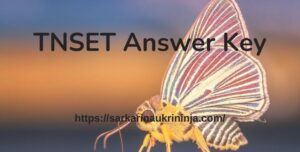 Read more about the article TNSET Answer Key 2021 – Download Tamil Nadu SET Answer Key Free Pdf For Paper 1 & 2