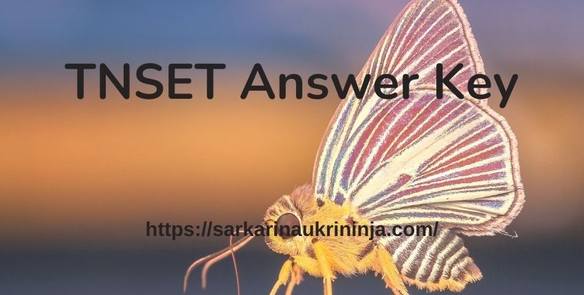 You are currently viewing TNSET Answer Key 2021 – Download Tamil Nadu SET Answer Key Free Pdf For Paper 1 & 2