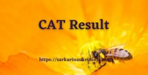 Read more about the article CAT 2021 Result – How Many Marks One Need to Qualify CAT Exam 2021?
