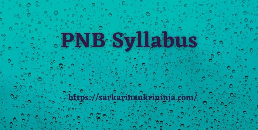 Read more about the article PNB Syllabus 2021 | Get pnbindia.in SM, Manager & Officer Test Pattern & Previous Year Papers