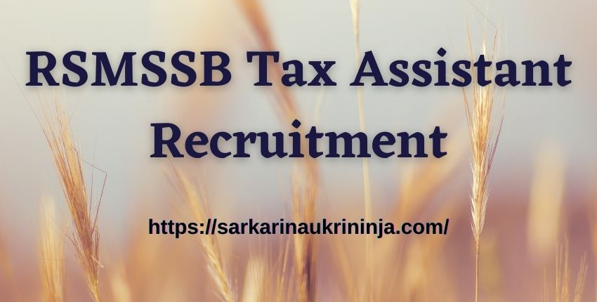 You are currently viewing RSMSSB Tax Assistant Recruitment 2021: Apply Online for कर सहायक (TA) Vacancies