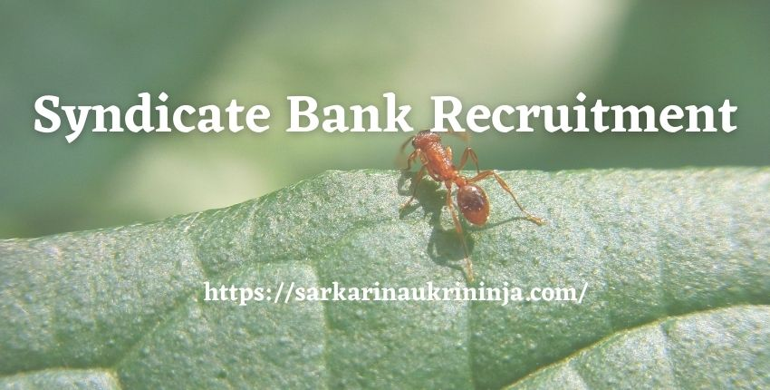 You are currently viewing Syndicate Bank Recruitment 2021 | Specialist Officer (SO) Jobs, Apply Online @ syndicatebank.in